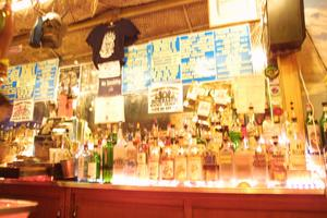 Behind the bar at Otto's Shrunken Head in New York