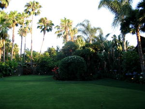 Some of the lush grounds at Humphrey's Half Moon Inn in San Diego
