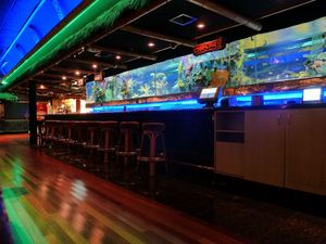 The rear side of the aquarium-lined bar at Trader Dick's in Sparks