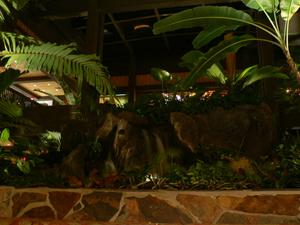 Plants and water feature in lobby at Disney's Polynesian Resort in Orlando