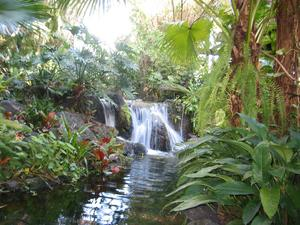 Waterfall at the entrance to Disney's Polynesian Resort in Orlando