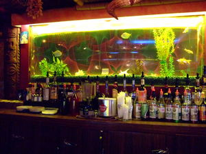 Aquarium behind bar at H�tel-Motel Coconut in Trois-Rivi�res