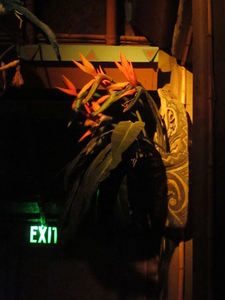 Singing bird-of-paradise flowers at The Enchanted Tiki Room in Anaheim