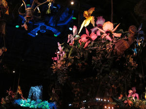 Singing flowers at The Enchanted Tiki Room in Anaheim