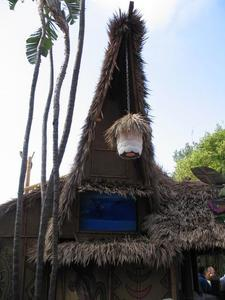 Lanai at the Enchanted Tiki Room
