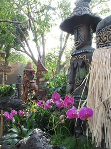 Lanai at the Enchanted Tiki Room in Anaheim