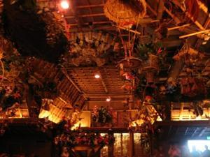 The Enchanted Tiki Room in Anaheim
