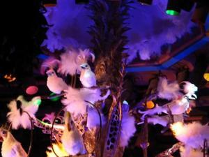 Birdmobile at the Enchanted Tiki Room in Anaheim