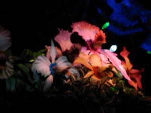 Flowers at the Enchanted Tiki Room in Anaheim