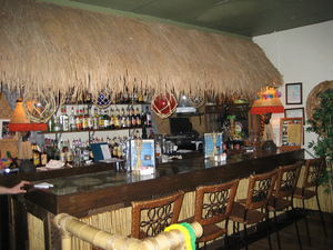 The bar at the Tiki Terrace in Prospect Heights