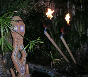 New gas torches in the gardens at Mai-Kai in Fort Laude