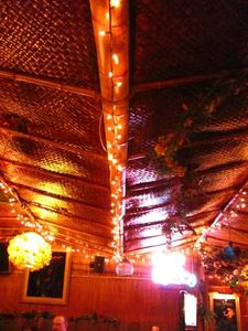 Ceiling at Sip-N-Dip Tiki Lounge in Great Falls
