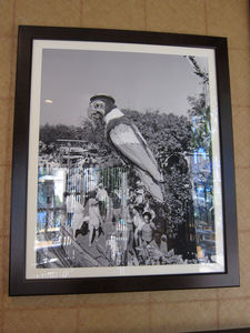 Photo of the Barker Bird that was once at the entrance to the Enchanted Tiki Room, at Tangaroa Terrace in Anaheim