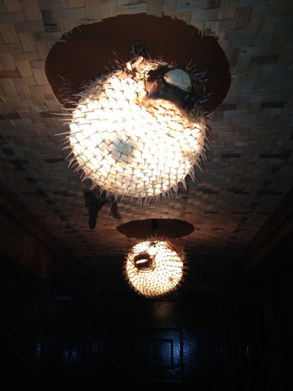 Pictures of lighting critiki for Puffer fish lamp