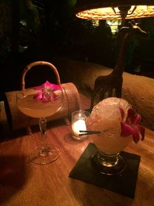 Black Orchid and Special Daiquiri at Longitude in Oakland